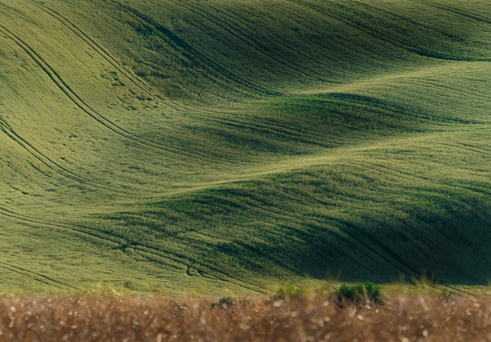 "Moravian ""Tuscany"", Czech Republic"