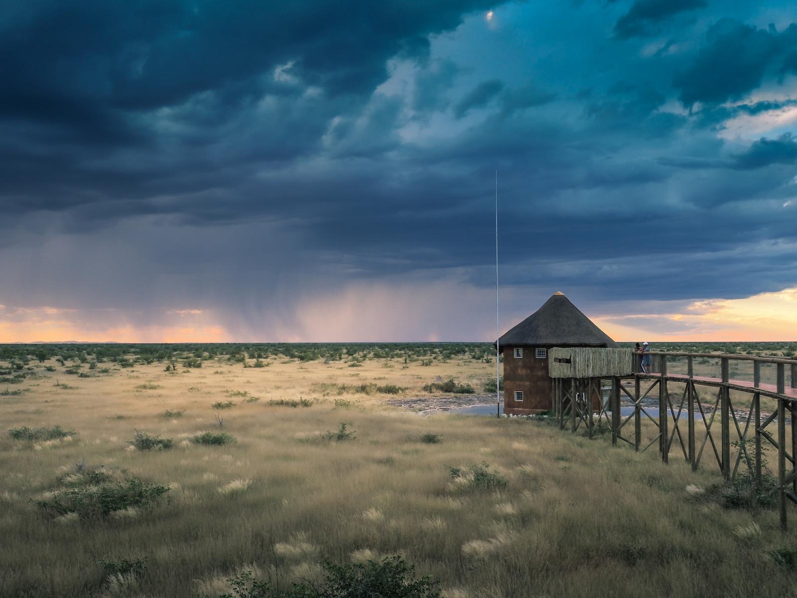Olifanstrus Camp, Namibia